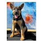 Vada - German Shepherd -1 Postcard