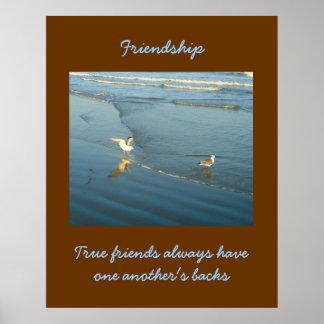 Vadear el poster de la amistad de las gaviotas póster