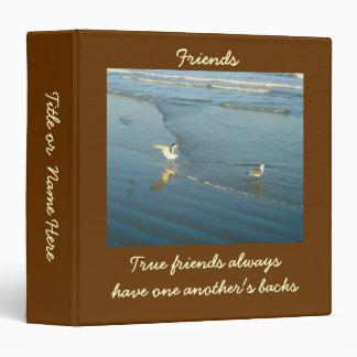 Vadear la carpeta de encargo de la amistad de las