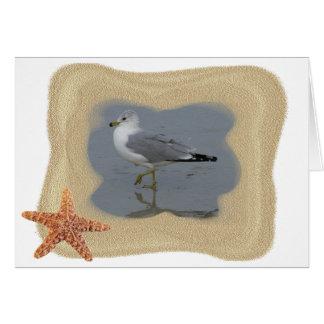 Vadear la gaviota 1 tarjeta de felicitación