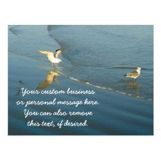 Vadear la postal del personalizado de las gaviotas