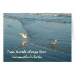 Vadear la tarjeta de la amistad de las gaviotas