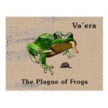 Va'era - Frogs Postcards