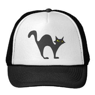 Vagabundeo del gato negro gorro