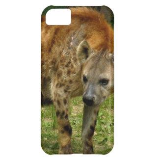 Vagabundeo del Hyena