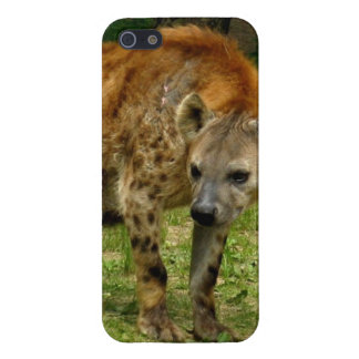 Vagabundeo del Hyena iPhone 5 Funda
