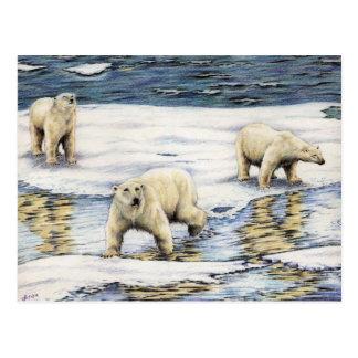 Vagabundos árticos postales