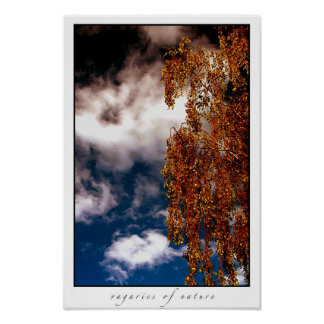 vageries of nature II Poster