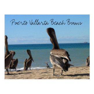 Vagos de la playa del pelícano tarjeta postal