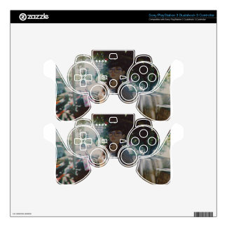 Vague Memories Of Summer Skin For PS3 Controller
