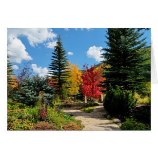 Vail Autumn Greeting Card