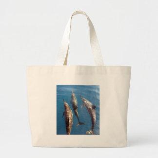 Vaina de la laguna azul Tahití de los delfínes Bolsas