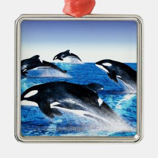 Vaina de la orca adorno navideño cuadrado de metal