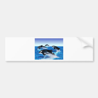 Vaina de la orca etiqueta de parachoque