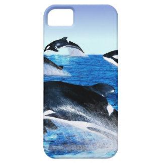 Vaina de la orca iPhone 5 Case-Mate cárcasa