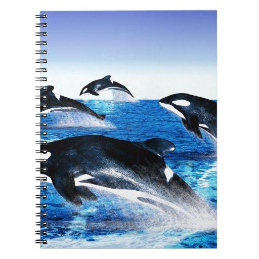 Vaina de la orca libreta espiral