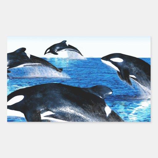 Vaina de la orca rectangular altavoz