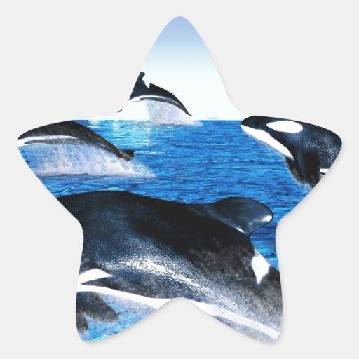 Vaina de la orca calcomanías forma de estrellas personalizadas
