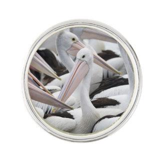 Vaina de pelícanos insignia