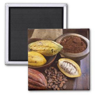 Vaina del cacao que contiene las habas del cacao q imán cuadrado