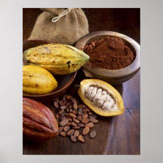 Vaina del cacao que contiene las habas del cacao q póster
