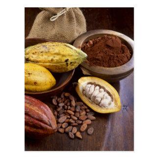 Vaina del cacao que contiene las habas del cacao postal