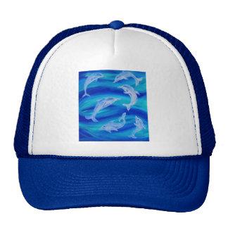 Vaina del delfín gorras