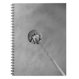 Vaina observada negro de Susan Spiral Notebook