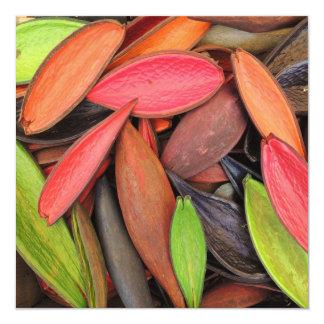 """Vainas coloridas de la semilla de la cosecha de la invitación 5.25"""" x 5.25"""""""