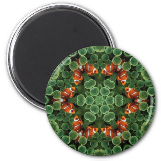 Vainas del verde de los pescados del payaso imán redondo 5 cm
