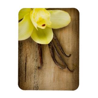 Vainas y flor de la vainilla sobre fondo de madera imán