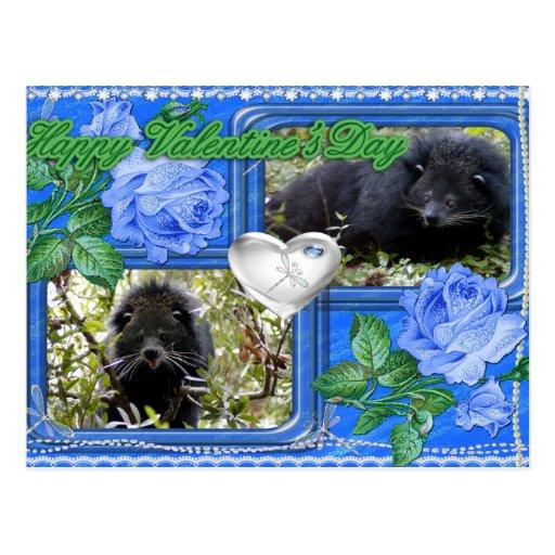 val-bearcat-00013-6x4 postal