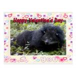 val-bearcat-00022-6x4 postal