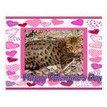 val-bengal-cat-00038-65x45 postales
