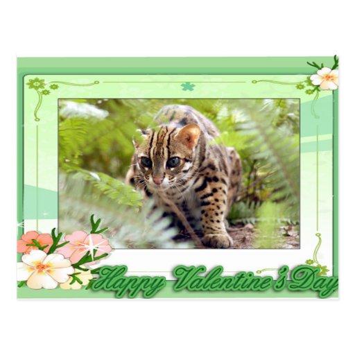 val-bengal-cat-00090-6x4 tarjetas postales