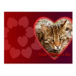 val-bengal-cat-00123-6x4 tarjeta postal