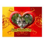 val-bengal-cat-00146 tarjeta postal