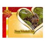 val-bengal-cat-00147 tarjetas postales