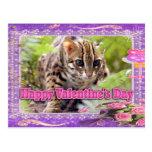 val-bengal-cat-00195-6x4 postales