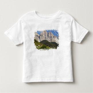 Val di Funes, Villnosstal, Dolomites, Italy Toddler T-shirt