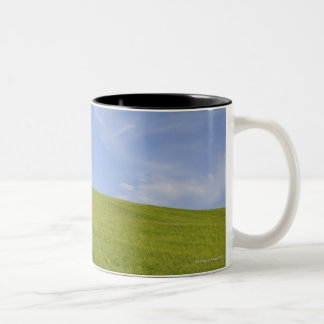 Val d'Orcia, Tuscany, Italy 2 Two-Tone Coffee Mug