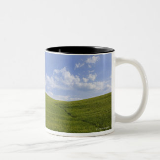 Val d'Orcia, Tuscany, Italy Two-Tone Coffee Mug