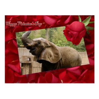 val-elephant-00025-6x4 postcard