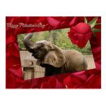 val-elephant-00025-6x4 tarjetas postales
