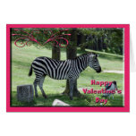 val-zebra-8 felicitaciones
