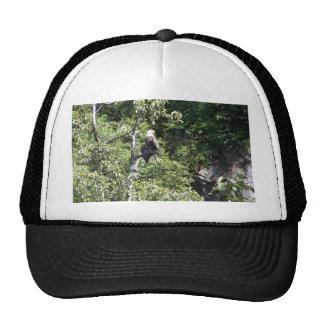 Valdez, Alaska Bald Eagle Trucker Hat