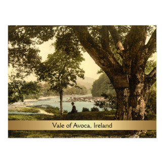 Vale of Avoca, County Wicklow, Ireland Postcard