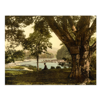 Vale of Avoca, County Wicklow Postcard