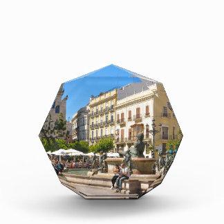 Valencia Acrylic Award