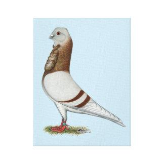 Valencian Figurita Pigeon Canvas Print